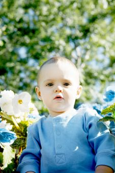 Free Little Boy Outdoors Royalty Free Stock Photos - 1311348