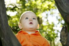 Free Little Boy Outdoors Stock Image - 1311571