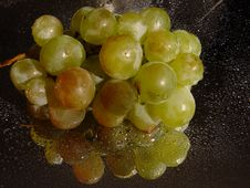 Free Grape Royalty Free Stock Photos - 1312158