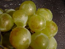 Free Grape Royalty Free Stock Photos - 1312178