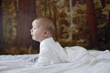 Free 7 Month Old Baby Boy Royalty Free Stock Photography - 1314177