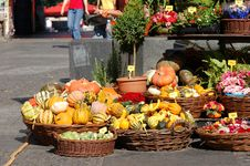 Street Garden Shop Royalty Free Stock Image