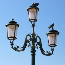 Lamppost And Pigeons. Royalty Free Stock Photo