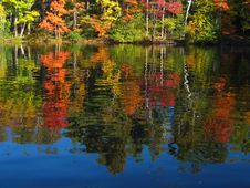 Free Autumn Lake Reflection Royalty Free Stock Image - 1314316
