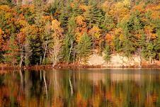 Free Autumn Lake Reflection Royalty Free Stock Photo - 1314355