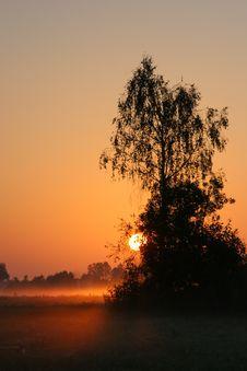 Free Sunrise Royalty Free Stock Photo - 1314845