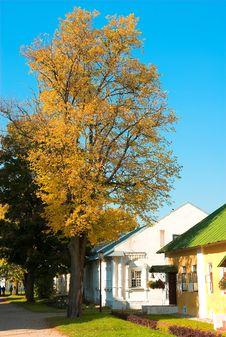 Free Golden Autumn Stock Image - 1315971