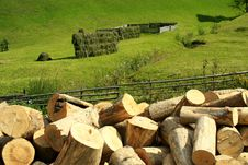 Free Wood Industry Stock Image - 1316381