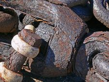 Free Rusted Steel Shank Royalty Free Stock Image - 1317646