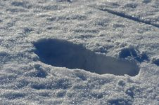Free Footprints In Snow Royalty Free Stock Image - 1318396
