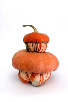 Free Pumpkins Royalty Free Stock Images - 1319499