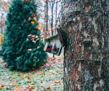 Free Christmas Tree Near House Figurine Stock Photos - 131017393
