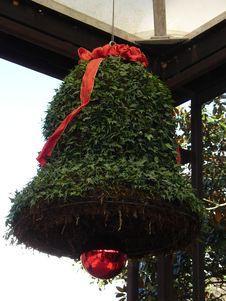 Free Tree, Christmas Decoration, Christmas Tree, Plant Royalty Free Stock Photos - 131082288