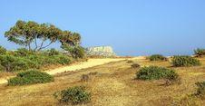 Free Vegetation, Ecosystem, Shrubland, Savanna Stock Photos - 131082703