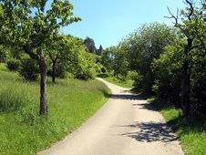 Free Road, Path, Nature, Vegetation Royalty Free Stock Photography - 131082767