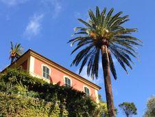 Free Sky, Palm Tree, Tree, Arecales Stock Photo - 131083110