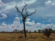Free Sky, Ecosystem, Tree, Savanna Royalty Free Stock Image - 131164736