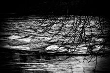 Free Reflection, Water, Black, Black And White Stock Photography - 131165142