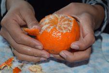 Free Fruit, Citrus, Clementine, Produce Stock Photo - 131165310
