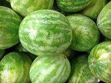 Free Watermelon, Melon, Cucumber Gourd And Melon Family, Produce Stock Photos - 131165763