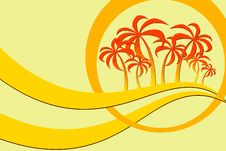 Free Palm Trees Stock Photography - 13128242