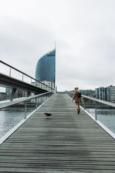 Free Woman Walking On Bridge With Tricolor Beagle Stock Images - 131201104