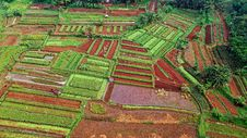 Free Bird S Eye View Of Green And Brown Fields Stock Image - 131201261