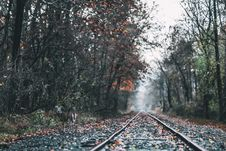 Free Railways In Foret Royalty Free Stock Image - 131266366
