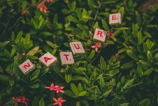 Free Scrabble Pieces Forming Nature Word Royalty Free Stock Photography - 131266397