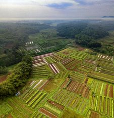 Free Aerial Photography Of Green Fields And Trees Under White Clouds And Blue Sky Stock Images - 131330164
