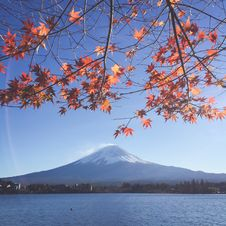 Free Scenic View Of Mount Fuji Royalty Free Stock Images - 131330299