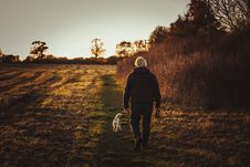 Free Person Walking With Puppy Near Trees Royalty Free Stock Photo - 131519045