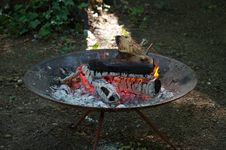 Free Outdoor Grill, Barbecue Grill, Barbecue, Water Stock Photo - 131671300