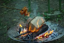 Free Campfire, Fire, Animal Source Foods, Forest Stock Photo - 131671350