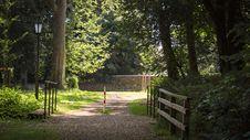 Free Nature, Ecosystem, Tree, Woodland Royalty Free Stock Photo - 131684615
