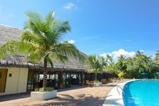 Free Swimming Pool Surrounded By Coconut Palms Royalty Free Stock Photos - 131719998