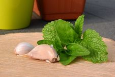 Free Herb, Leaf Vegetable, Plant, Vegetable Stock Photos - 131754053