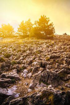 Free Black Rock Formation Near Trees Stock Photo - 131860010
