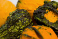 Free Gourds Royalty Free Stock Photography - 1323247