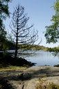 Free Scandinavian Scenery Stock Photos - 1328943