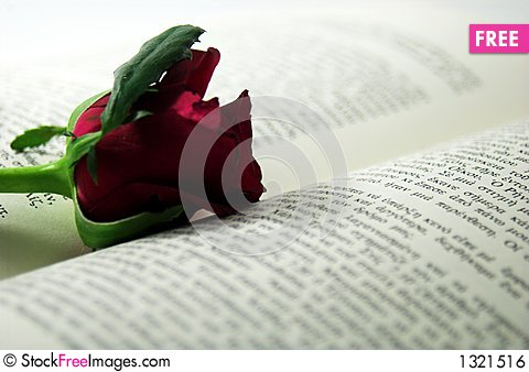 Red rose and book 2 Stock Photo