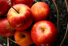 Free Appels Royalty Free Stock Photography - 1320357