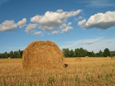 Free Haystack Stock Photography - 1321662