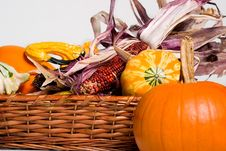 Free Pumpkins Twigs Basket Royalty Free Stock Image - 1322046