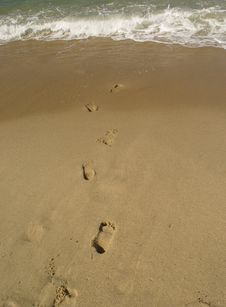 Free Foot Prints Royalty Free Stock Images - 1322099
