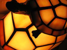 Free Turtle Lamp Stock Photos - 1325463