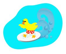 Surfing Duck Royalty Free Stock Photography