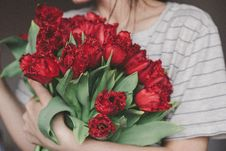 Free Woman Holding Bouquet Of Red Flowers Stock Photos - 132036683