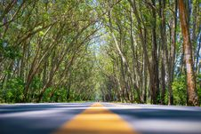 Free Scenic View Of Roadway During Daytime Stock Photos - 132036813