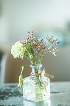 Free Green And Purple Petaled Flowers In Clear Glass Vase Royalty Free Stock Photography - 132036947
